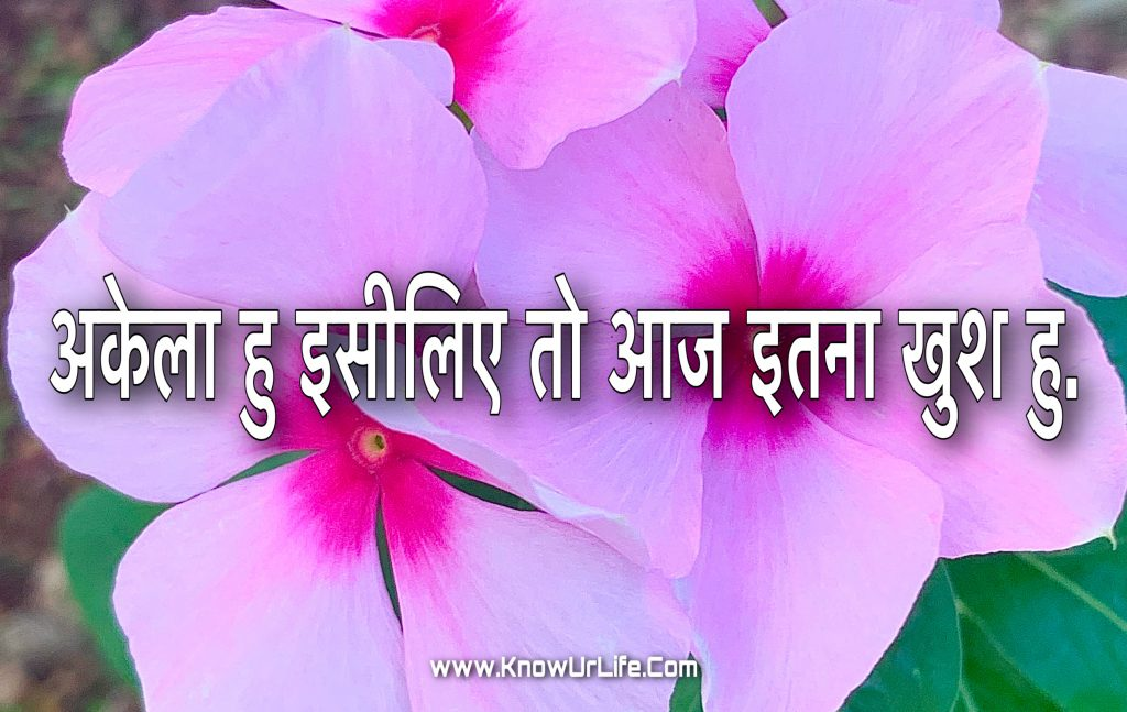 heart touching lines in hindi with images