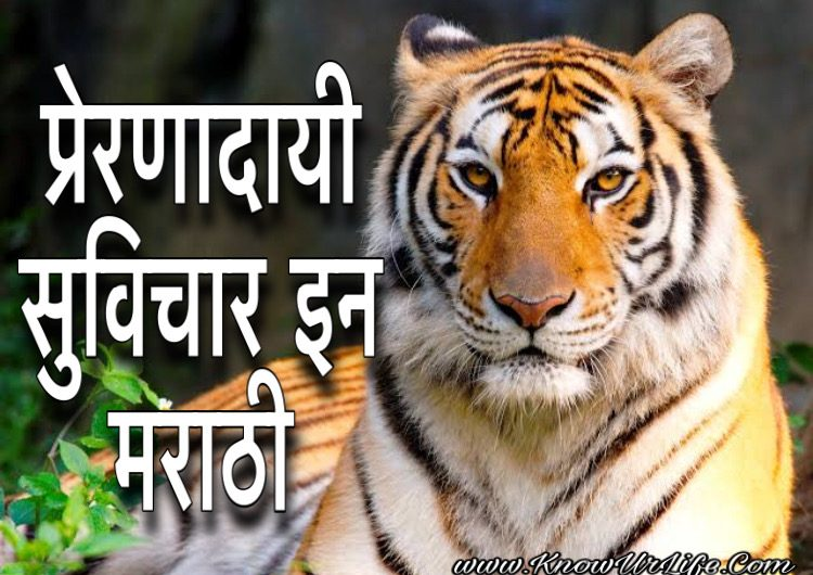 {Top} Motivational Quotes In Marathi | 2020 – एकदम कडक प्रेरणादायक सुविचार