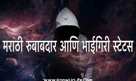 cool marathi status message