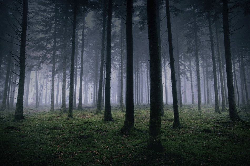 haunted places in delhi in hindi